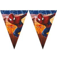 Spiderman 2 Triangular Flag Banner