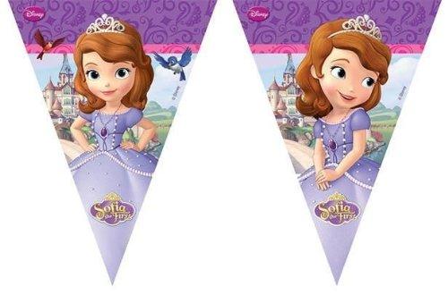 Sofia The First Bunting