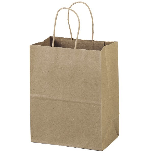 Natural Paper Party Bag Large