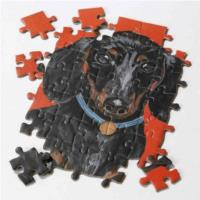 Pooch Puzzle Dachshund - 100PCS