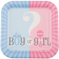 Gender Reveal Baby Shower Plates 7