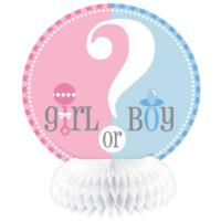 Gender Reveal Baby Shower Honeycomb